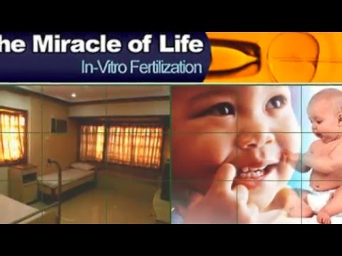 0:00 / 1:26 Best IVF Center In India - IVF Treatment - Infertility treatment Gujarat