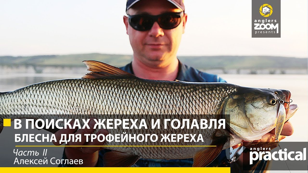 Видео Блесна Pontoon 21 Sampliora 72mm 33g