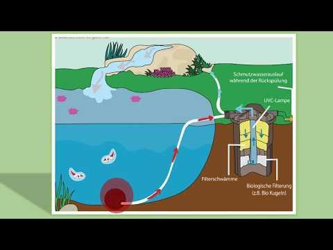 Druckfilter für den Teich: Funktionsweise