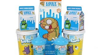Lost Kitties Series 2 Multipack, Itty Bitty and Kit Twins Blind Box Unboxing Toy Review