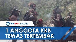 1 Anggota KKB Papua yang Tewas Langsung Ditinggal Teman setelah Baku Tembak dengan TNI di Intan Jaya