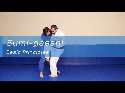 Sumi-gaeshi - Basic principles