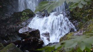 八幡平市不動の滝日本の滝百選の一つ|盛岡観光おすすめ|岩手観光スポット