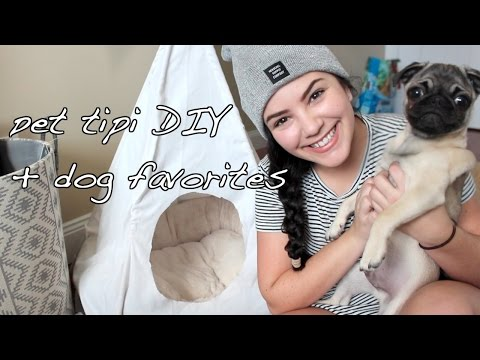 Easy Affordable Dog Tipi DIY & Puppy Favorites And Essentials Ft. Chubby The Pug | Laurie Martel