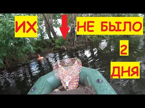 Как мы уток искали... / Прогулка по реке / Поиски на реке / Семья в деревне