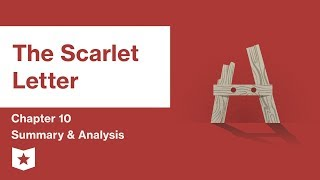 The Scarlet Letter  | Chapter 10 Summary and Analysis | Nathaniel Hawthorne