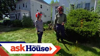 How to Remove Overgrown Foundation Shrubs   Ask This Old House