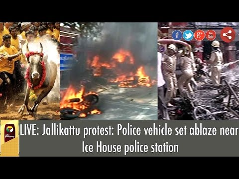 LIVE: Jallikattu protest: Police vehicle set ablaze near Ice House police station | Detailed Report