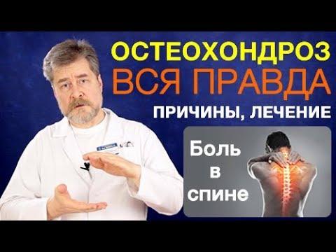 Гимнастика при боли в плечевом суставе евдокименко