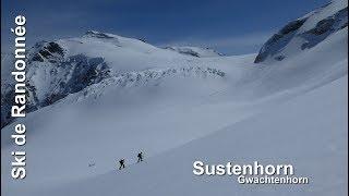 Ski de randonnée : Sustenhorn - 3503m