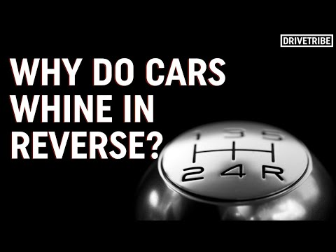Why do cars whine in reverse? – Mike's Mechanics