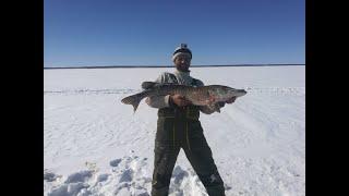 Рыбалка на кольский полуостров в марте 2020