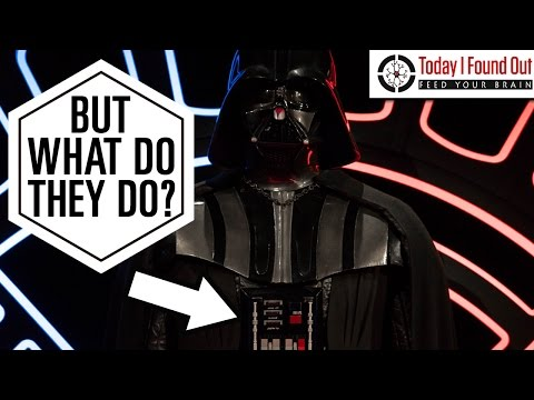 What Do The Buttons On Darth Vaders Suit Do? Mp3