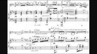 Guillaume Lekeu - Violin Sonata in G (1892/93)
