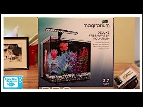 Setting Up and Reviewing the Imagitarium 3.7 Gallon Pro Deluxe Nano Aquarium