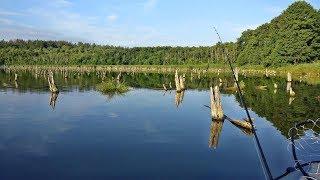 Ловля щуки в коряжнике,  Рыбалка на спиннинг,  Опасное место для лодки