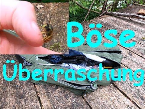 Wespenstich LIVE   Gefundene Angeltasche auspacken - Ausmisten Fischerhütte Teil 4
