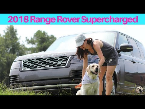 2018 Range Rover Supercharged: Andie the Lab Review! #RangeRover #AndietheLab #Dogs