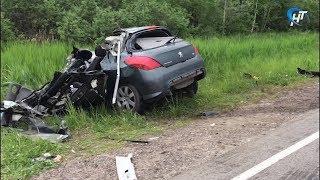 Причиной смертельной аварии легковой и грузовой машин под Старой Руссой стал человеческий фактор