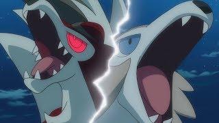 Rockruff  - (Pokémon) - Lycanroc and rockruff AMV - Courtesy call