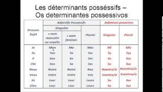 Os determinantes possessivos em Francês