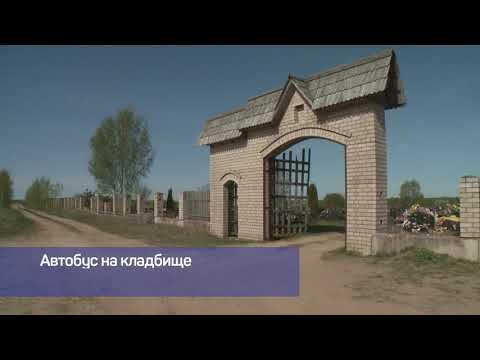 Актуально Псков / 04.06.2020