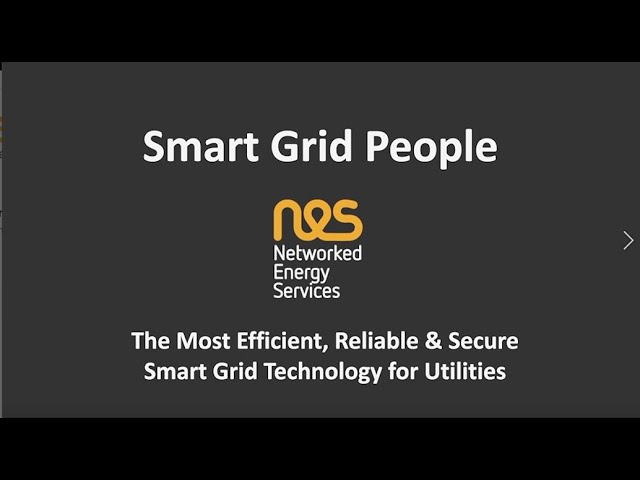 About Networked Energy Services - what can we do for your Smart Grid?