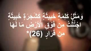 تحميل اغاني مشاري البغلي - (ألم تر كيف ضرب الله مثلا كلمة طيبة كشجرة طيبه اصلها ثابت وفرعها في السماء ) MP3
