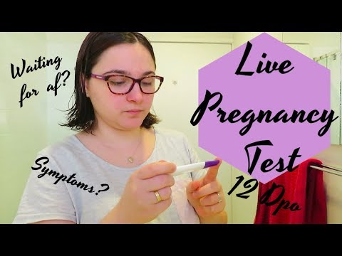 Download Very Early Live Pregnancy Test Video 3GP Mp4 FLV HD Mp3