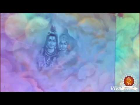 Anushree Sharma Home Ganpati Decoration Video