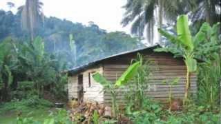 RICHARD BONA - kalabancoro - Dipita