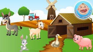 Домашние животные — Учим голоса животных — Силуэты животных