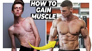 This Is Why You're Not Gaining Muscle | Alex Costa