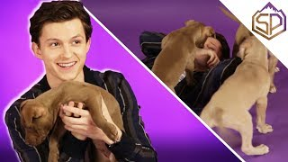 Том Холланд играется с щеночками и отвечает на вопросы