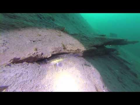 Eistauchen Weissensee mit Dive World