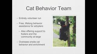 Million Cat Challenge: Keeping Cats out of Shelters - webcast