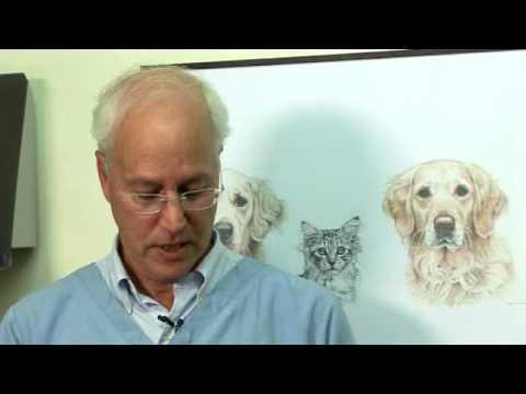 Vidéo de Bruce Fogle