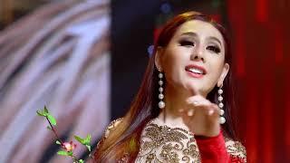 Lâm Khanh CHI cặp kè Ngôi sao Mưa Bụi Chế THANH tung tuyệt phẩm Xuân trên sân khấu đẹp như hải ngoại