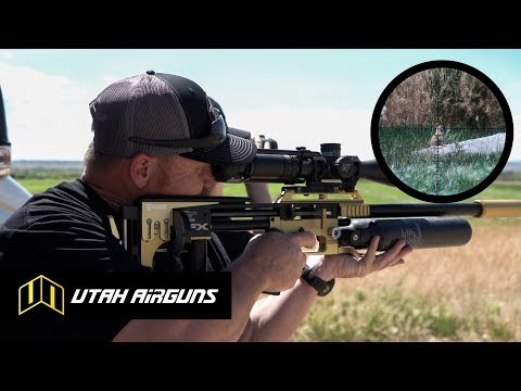 Download New 25 Cal Airgun Hunting Slugs Video 3GP Mp4 FLV HD Mp3