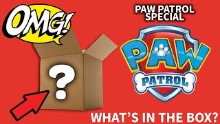 Paw Patrol Special - What's In The Box?