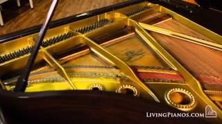 Used Mason & Hamlin Grand Piano For Sale - Model A