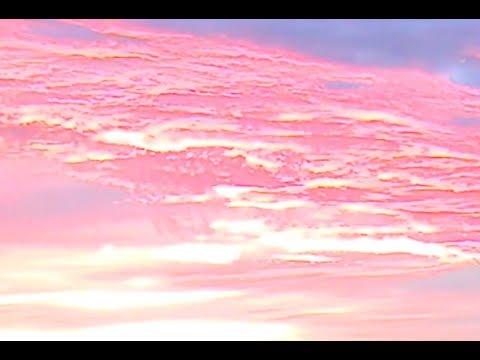 WOS - PURPURA (Video Oficial)