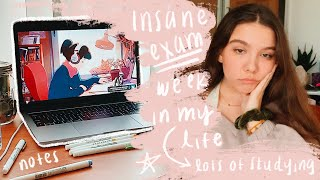 College Vlog: Midterms Week in My Life - Studying & Stressing - Michigan State University