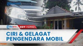 Ada Ciri dan Gelagat Penting Sosok Pengendara Mobil Alphard Kasus Subang yang Dimarahi Sopir Angkot