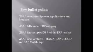 SAP Security Demo