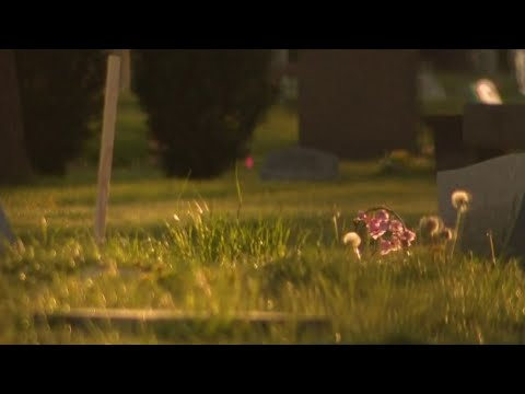 Another family wants answers regarding loved ones' remains at Detroit cemetery