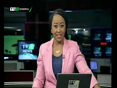 Femi Adesina reacts to Olisa Agbakoba's comments on Buhari's campaign document