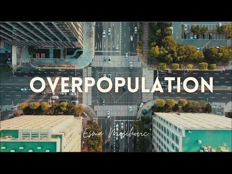 Overpopulation - by Esma Mesihovic