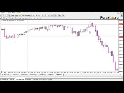 Best forex training app for android