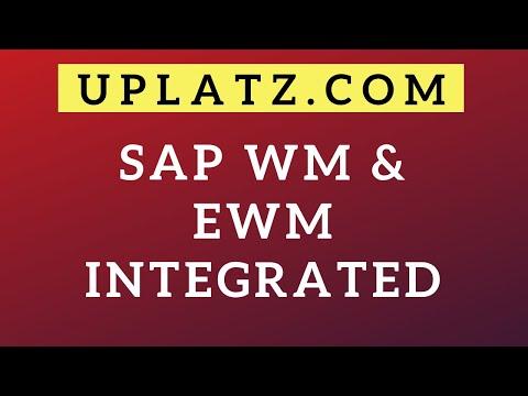 SAP WM & EWM Integrated Course | SAP Warehouse Management ...